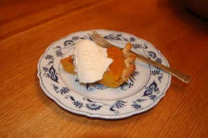 Slice of pumpkin pie - not for chickens!