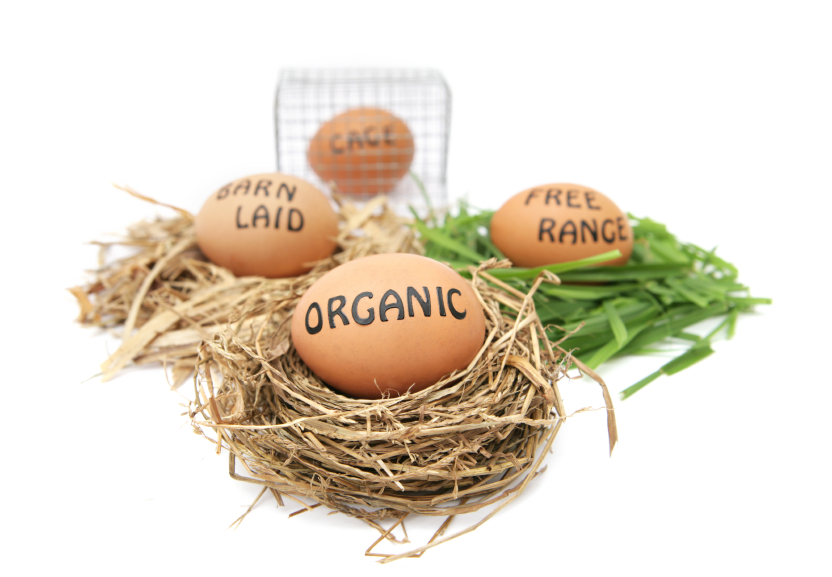 Egg labels: organic, free range, etc.