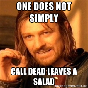 Dear chickens, one does not simply call dead leaves a salad (LOTR meme)