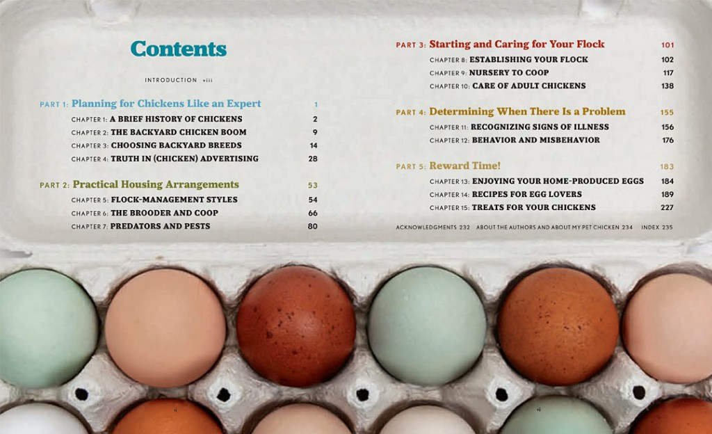 Table of contents - sing the egg song for the beautiful eggs in the photo!