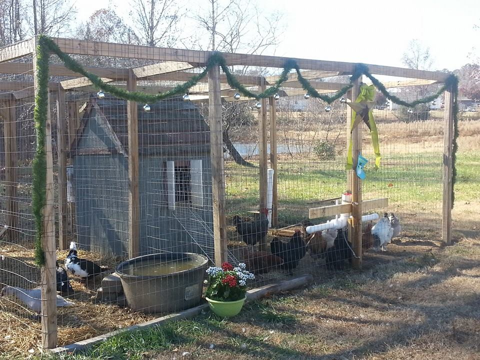 Shannon's Decorated Poultry Pens
