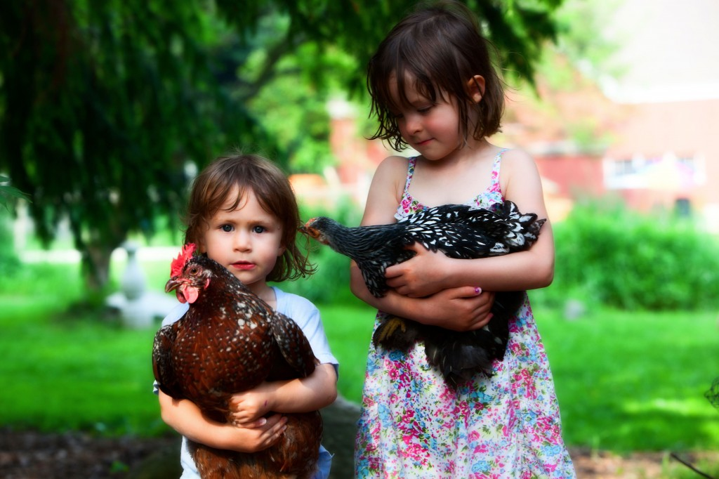 Two girls holding pet chickens- use farm insurance