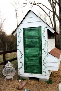 How I beautified my coop with paint
