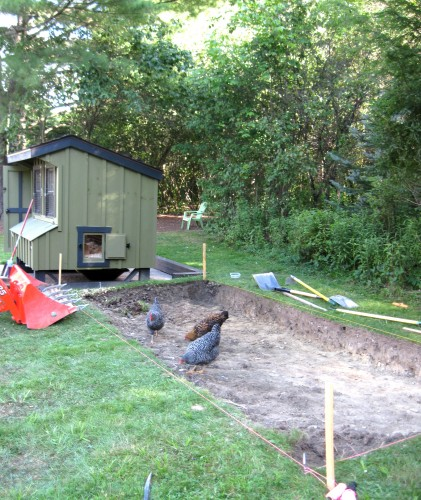 preparing the custom chicken run with excavation