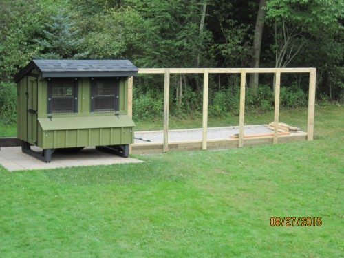 building the custom chicken run: the first wall goes up