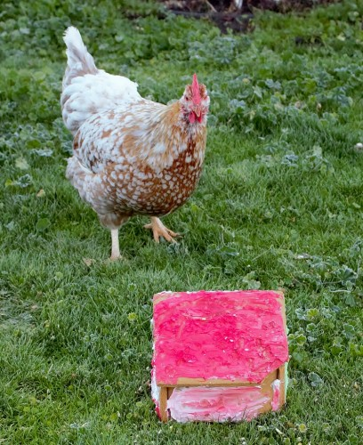 A chickenzilla eyes a gingerbread house with suspicion