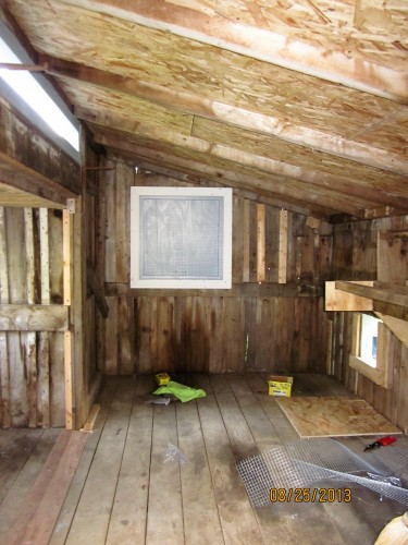 Rebuilding the coop: interior is secure
