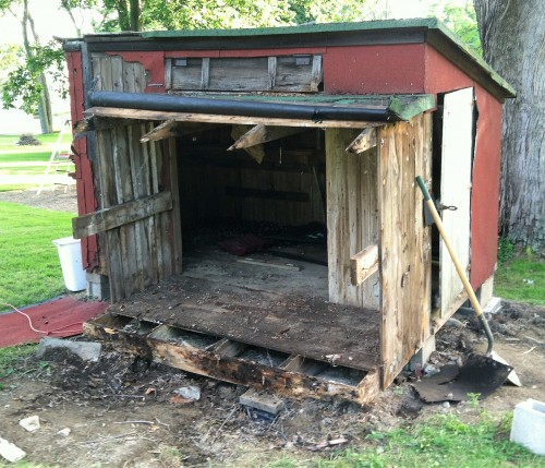 Rebuilding the coop: removing the rotted wood