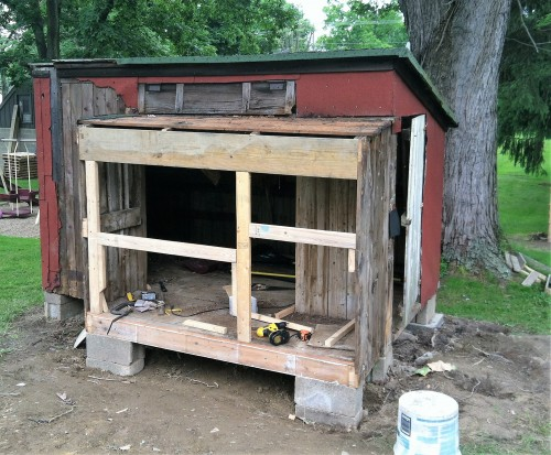 Rebuilding the coop: framed in