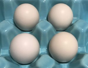 eggs for use in making salt-cured egg yolks